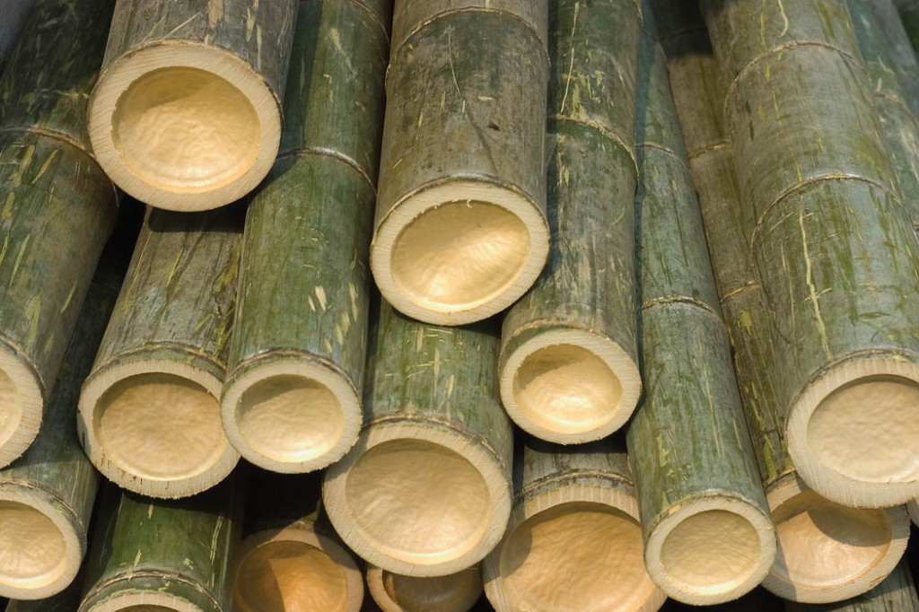 bamboo drying