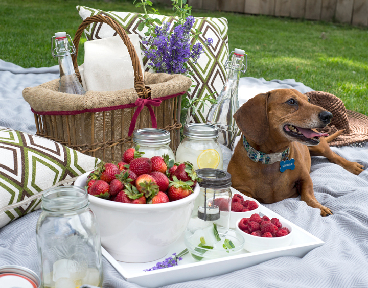 10 Ways to Have a Luxurious Picnic