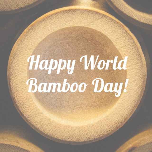 5 Reasons to Celebrate World Bamboo Day