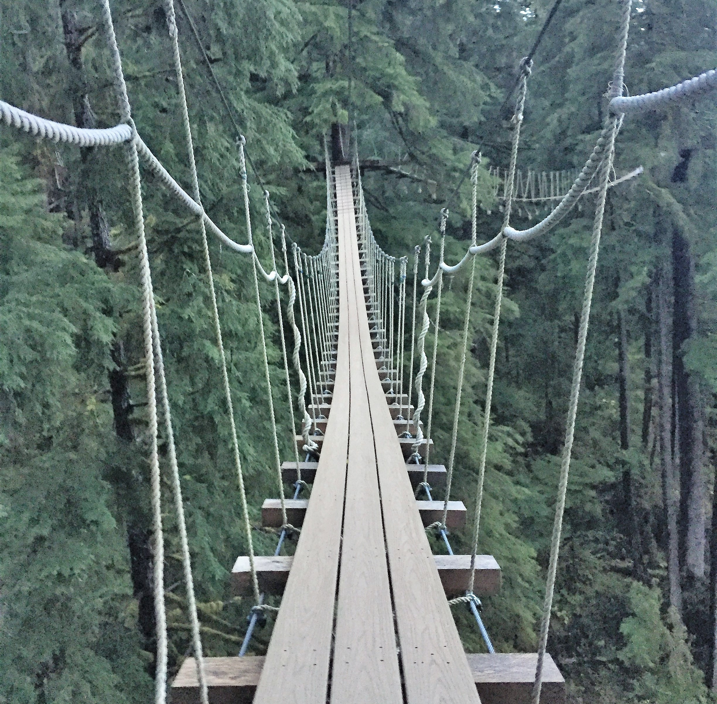 ketchikan-herring-cove-bridge