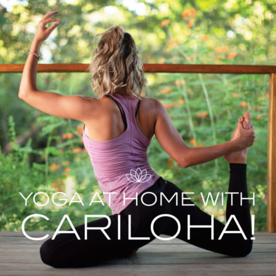 Celebrating Yoga at Home on International Yoga Day with Cariloha