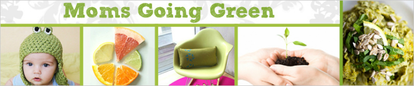 Moms Going Green - Review of Cariloha